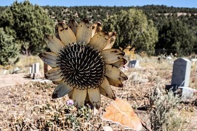cemetery-1697534_640.jpg