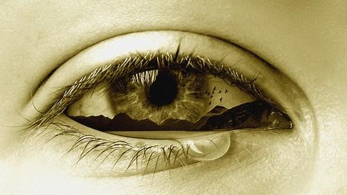 eye-2274884_640