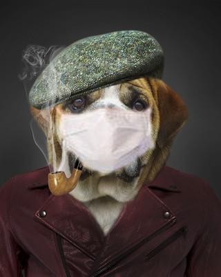 Glomérule masqué